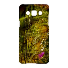 Dragonfly Dragonfly Wing Insect Samsung Galaxy A5 Hardshell Case  by Nexatart