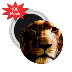 Lion  2 25  Magnets (100 Pack)  by Valentinaart