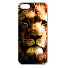 Lion  Apple Seamless Iphone 5 Case (clear) by Valentinaart