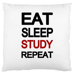 Eat Sleep Study Repeat Large Flano Cushion Case (one Side)