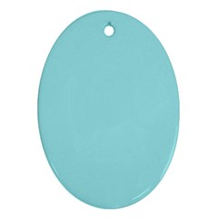 Trendy Basics   Trend Color Island Paradise Ornament (oval) by tarastyle