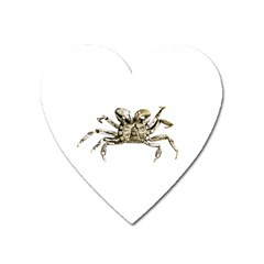 Dark Crab Photo Heart Magnet by dflcprints