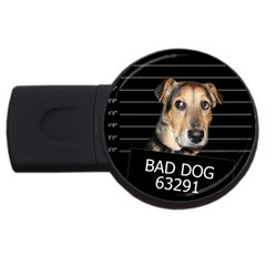 Bed Dog Usb Flash Drive Round (2 Gb) by Valentinaart
