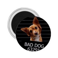 Bad Dog 2 25  Magnets by Valentinaart