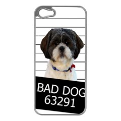 Bad Dog Apple Iphone 5 Case (silver) by Valentinaart