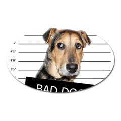 Bad Dog Oval Magnet