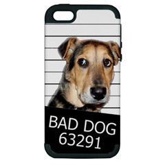 Bad Dog Apple Iphone 5 Hardshell Case (pc+silicone) by Valentinaart