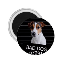 Bad Dog 2 25  Magnets