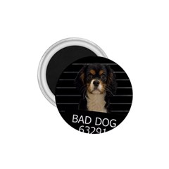 Bad Dog 1 75  Magnets by Valentinaart