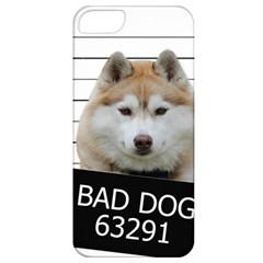 Bad Dog Apple Iphone 5 Classic Hardshell Case by Valentinaart