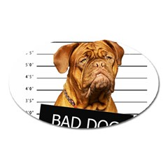 Bad Dog Oval Magnet by Valentinaart