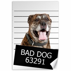 Bad Dog Canvas 20  X 30