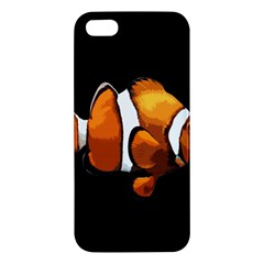 Clown Fish Apple Iphone 5 Premium Hardshell Case