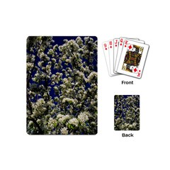 Floral Skies Playing Cards (mini)