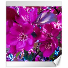 Pretty In Fuchsia Canvas 20  X 24   by dawnsiegler