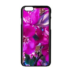 Pretty In Fuchsia Apple Iphone 6/6s Black Enamel Case by dawnsiegler