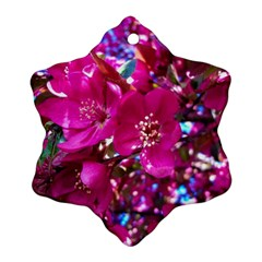 Pretty In Fuchsia 2 Ornament (snowflake) by dawnsiegler