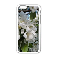 Pure And Simple Apple Iphone 6/6s White Enamel Case by dawnsiegler