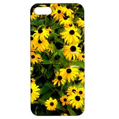 Walking Through Sunshine Apple Iphone 5 Hardshell Case With Stand by dawnsiegler