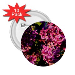 Lilacs 2 25  Buttons (10 Pack)  by dawnsiegler