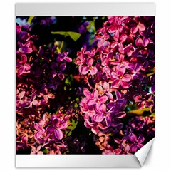 Lilacs Canvas 20  X 24   by dawnsiegler