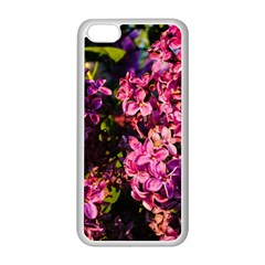 Lilacs Apple Iphone 5c Seamless Case (white) by dawnsiegler