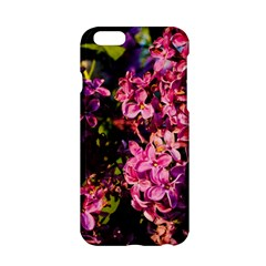 Lilacs Apple Iphone 6/6s Hardshell Case by dawnsiegler