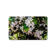 Tree Blossoms Magnet (name Card) by dawnsiegler