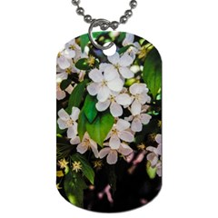 Tree Blossoms Dog Tag (two Sides) by dawnsiegler