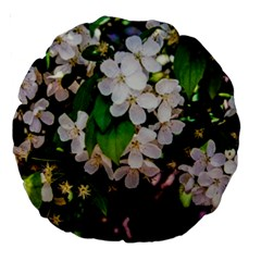 Tree Blossoms Large 18  Premium Round Cushions