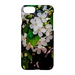 Tree Blossoms Apple Iphone 7 Hardshell Case by dawnsiegler