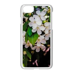 Tree Blossoms Apple Iphone 7 Seamless Case (white) by dawnsiegler
