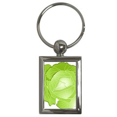 Cabbage Leaf Vegetable Green Key Chains (rectangle)  by Mariart