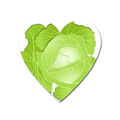 Cabbage Leaf Vegetable Green Heart Magnet by Mariart