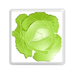 Cabbage Leaf Vegetable Green Memory Card Reader (square)  by Mariart