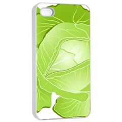 Cabbage Leaf Vegetable Green Apple Iphone 4/4s Seamless Case (white) by Mariart