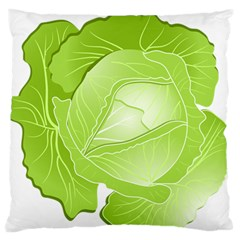 Cabbage Leaf Vegetable Green Large Flano Cushion Case (one Side) by Mariart