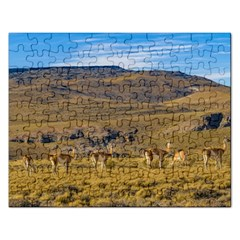 Group Of Vicunas At Patagonian Landscape, Argentina Rectangular Jigsaw Puzzl by dflcprints