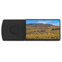 Group Of Vicunas At Patagonian Landscape, Argentina Usb Flash Drive Rectangular (4 Gb) by dflcprints