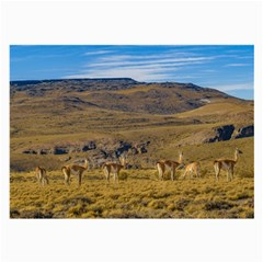 Group Of Vicunas At Patagonian Landscape, Argentina Large Glasses Cloth (2-side) by dflcprints
