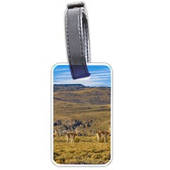 Group Of Vicunas At Patagonian Landscape, Argentina Luggage Tags (one Side)  by dflcprints