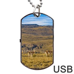 Group Of Vicunas At Patagonian Landscape, Argentina Dog Tag Usb Flash (two Sides) by dflcprints