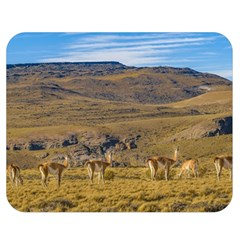 Group Of Vicunas At Patagonian Landscape, Argentina Double Sided Flano Blanket (medium)  by dflcprints