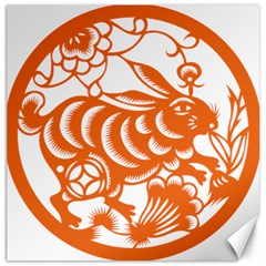 Chinese Zodiac Horoscope Rabbit Star Orange Canvas 20  X 20