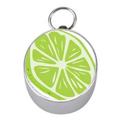 Gerald Lime Green Mini Silver Compasses by Mariart