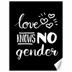 Love Knows No Gender Canvas 12  X 16   by Valentinaart