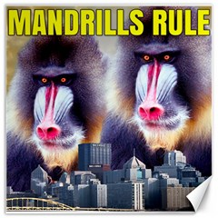 Mandrills Rule Canvas 20  X 20   by RakeClag