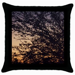 Arizona Sunset Throw Pillow Case (black) by JellyMooseBear