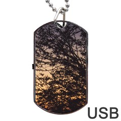 Arizona Sunset Dog Tag Usb Flash (two Sides) by JellyMooseBear