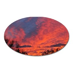Arizona Sky Oval Magnet by JellyMooseBear